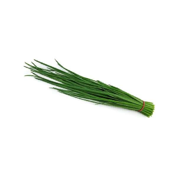 Лук зелёный перо